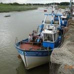 3 Aôut 2014 Les bateaux avant le départ