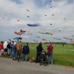 31 mai 2014 - Notre ciel plein de cerfs-volants